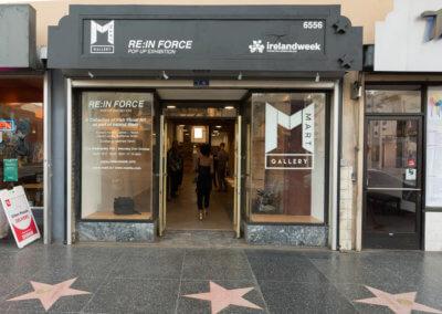 2 IrelandWeeks REINFORCE at MART Gallery -